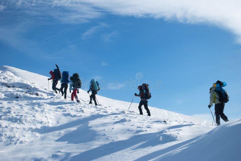Hikers in a winter mountain, Ukraine, Karpaty stock photos
