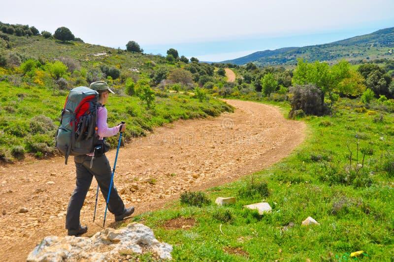 Hiking девушки стоковые изображения rf