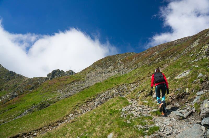 hiking детеныши женщины стоковое фото