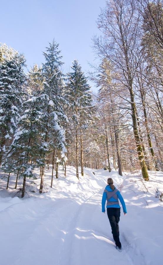 hiking женщина зимы стоковая фотография rf