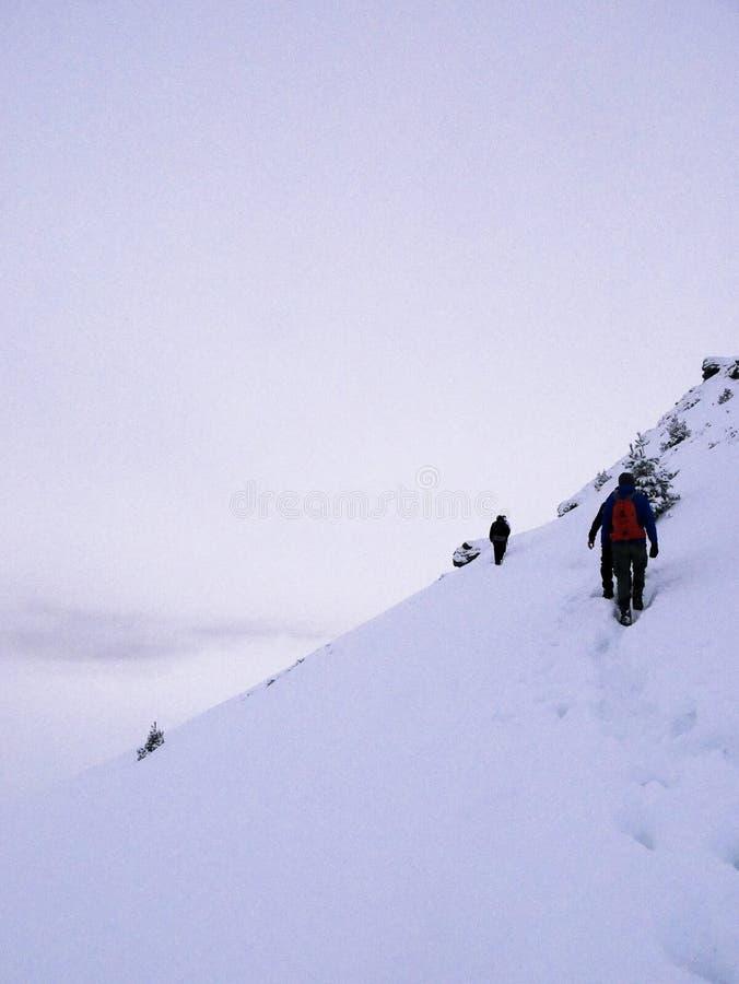 Hiking к верхней части стоковые фото