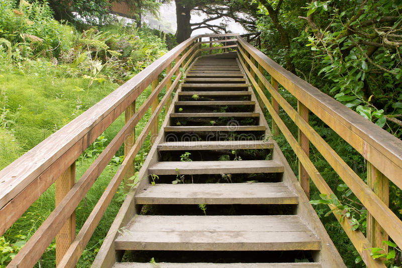 hiking лестницы отставют деревянное стоковые фотографии rf