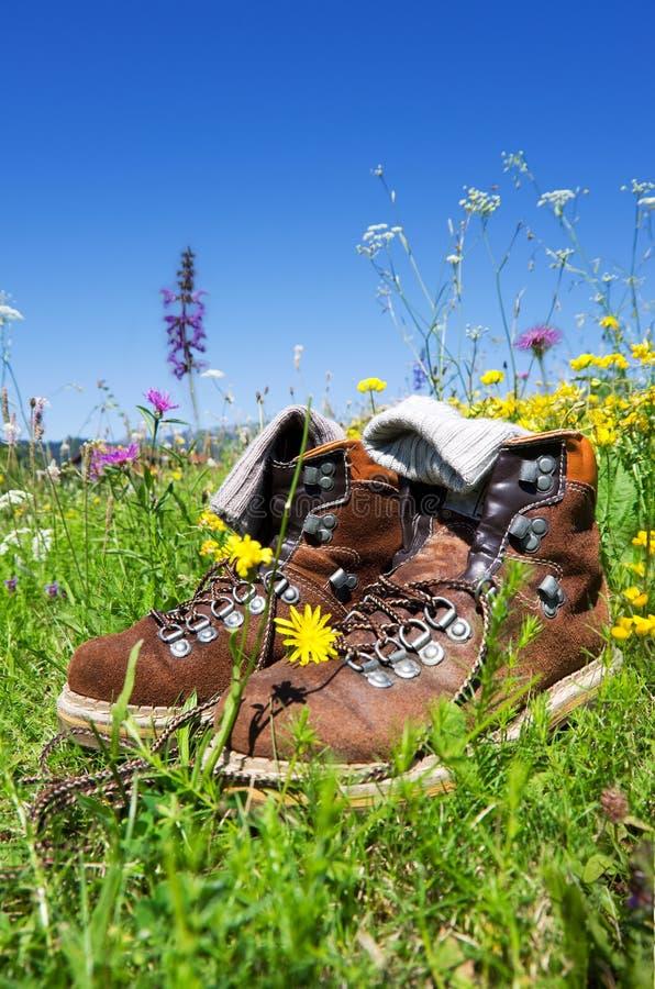 Hiking лужок ботинок стоковые фотографии rf