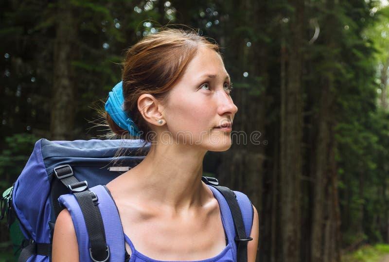 hiking пущи стоковые фото