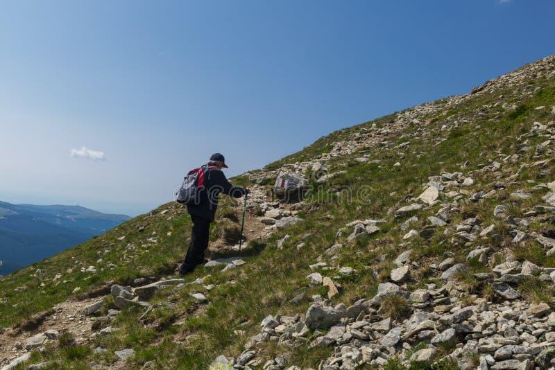 Hiking старшего человека стоковые изображения