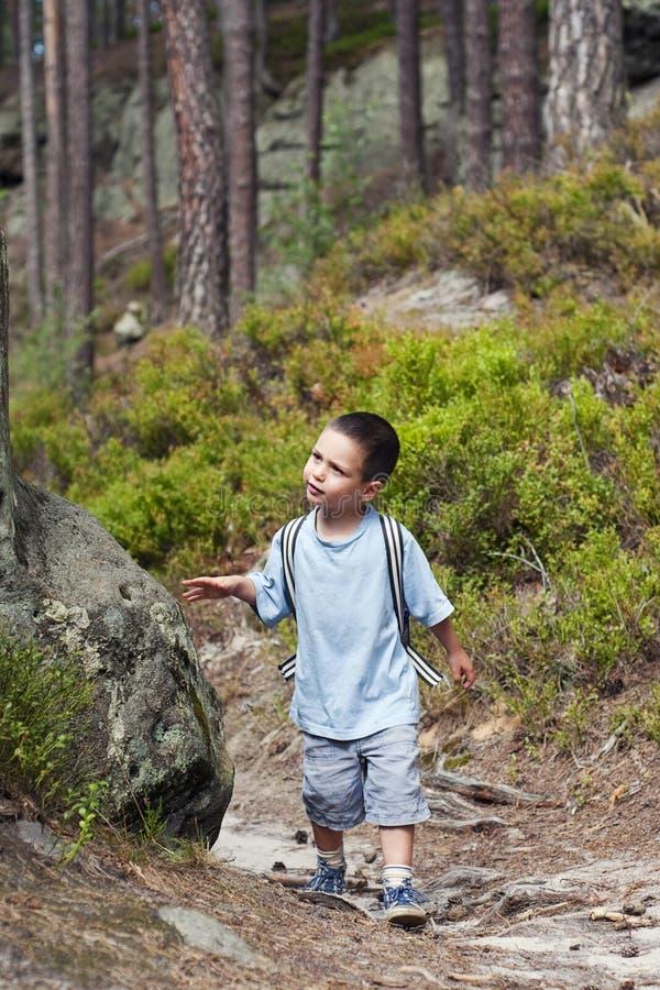 Hiking с дет стоковое изображение