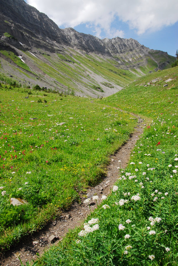 hiking тропка горы верхняя стоковое фото