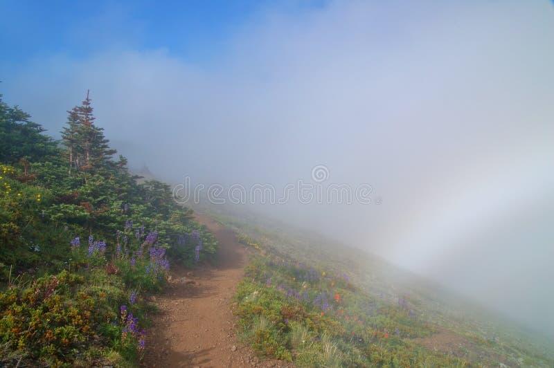 Download Hiking тропка гор стоковое фото. изображение насчитывающей олимпийско - 1179664