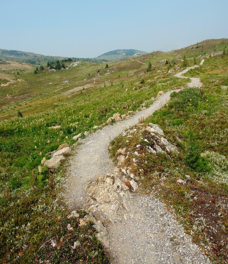 hiking тропка солнечности стоковое фото rf
