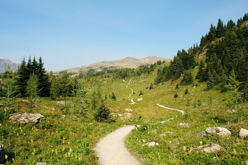 hiking тропка стоковая фотография rf
