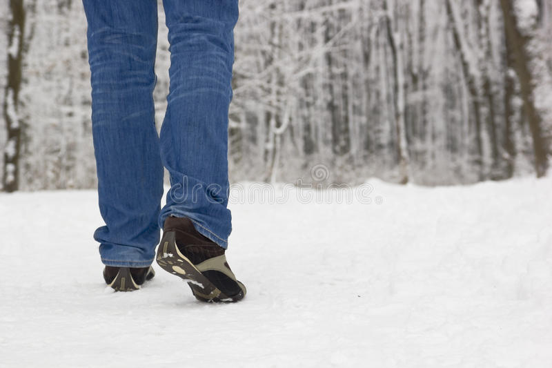 Download Hiking stock photo. Image of outdoor, foot, footprint - 24782926