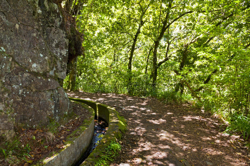 Hiking along irrigation canals Levada, Madeira, Portugal stock photo