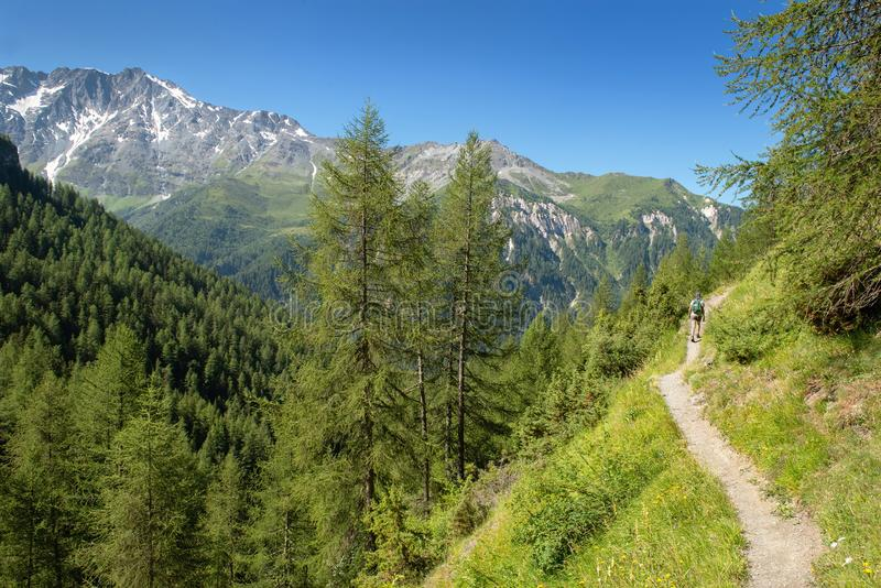 Hiking on an alpine footpath stock images