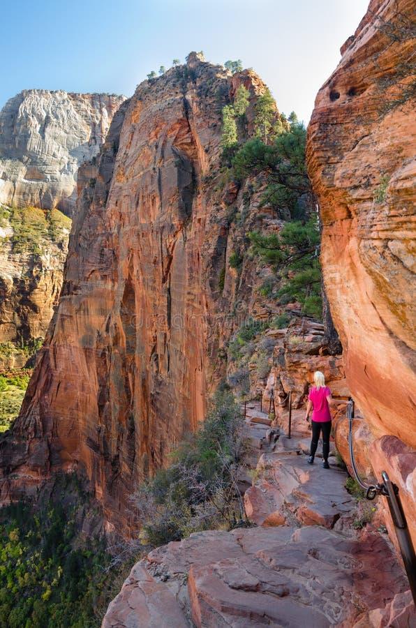 Free Hiking Angel´s Landing Royalty Free Stock Photos - 26213198