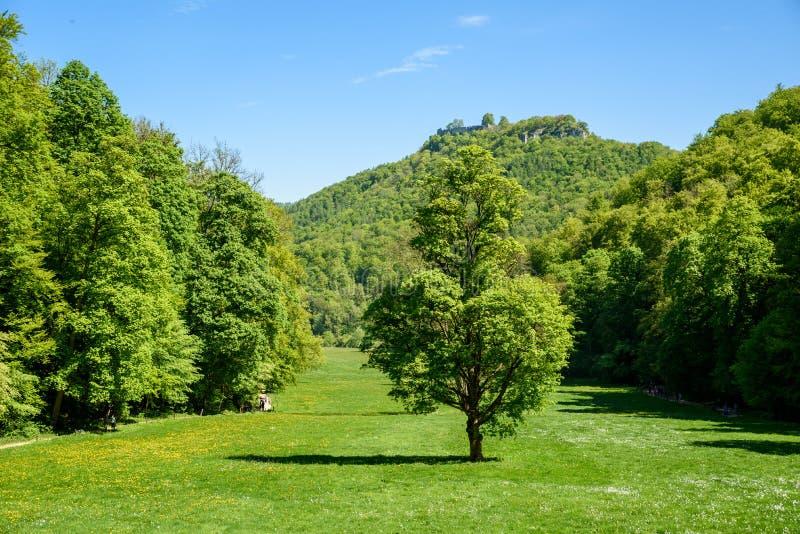 Hiking in beautiful landscape of Bad Urach, Swabian Alb, Baden-Wuerttemberg, Germany, Europe stock photos