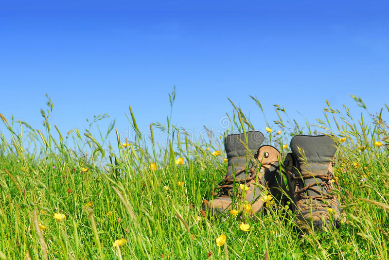 Download Hiking boots stock photo. Image of equipment, sole, laces - 10130172