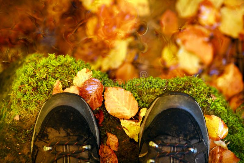 Hiking boots on background of fallen autumn leaves. Hiking boots on the background of fallen autumn leaves stock photos
