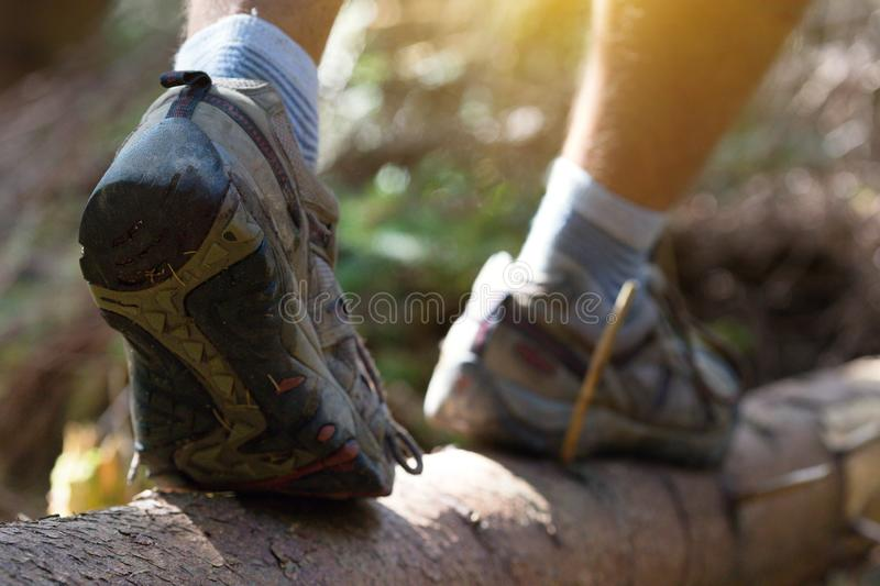 A hiking boots. Hiking boots close-up. boy tourist steps on a log royalty free stock image