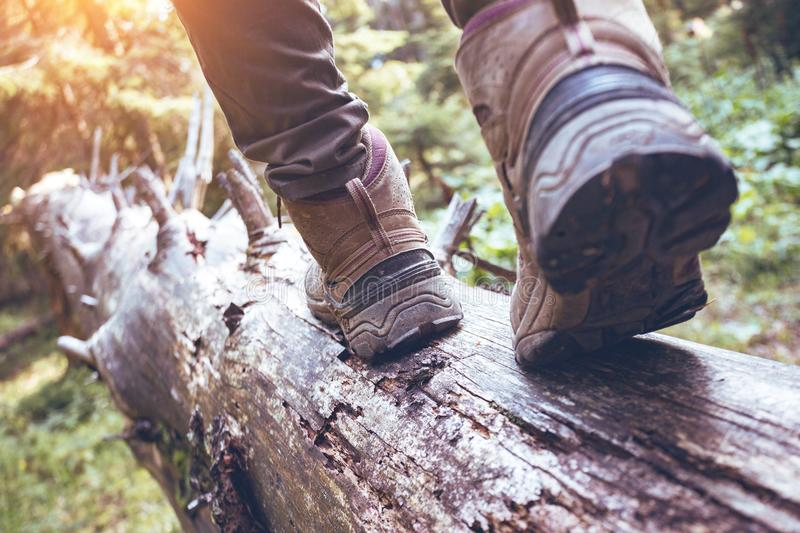 A hiking boots. Hiking boots close-up. girl tourist steps on a log stock photo