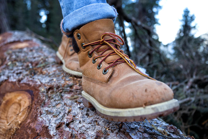 Hiking boots. Close-up. girl tourist steps on a log stock photos