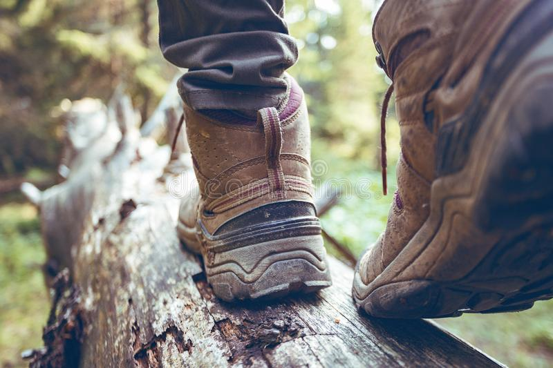 A hiking boots. Hiking boots close-up. girl tourist steps on a log stock image