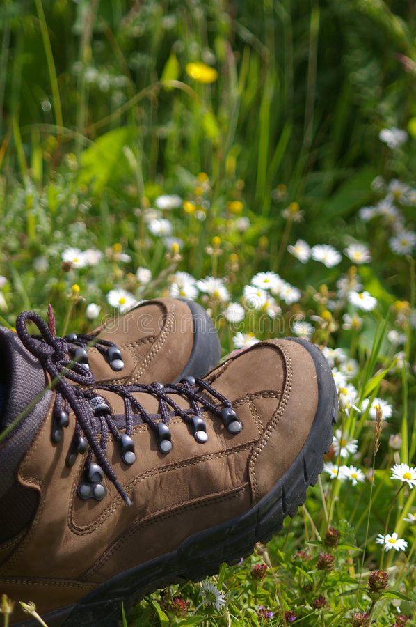 Hiking boots in field of daisys. Hiking boots sitting in a field of daisys stock photography