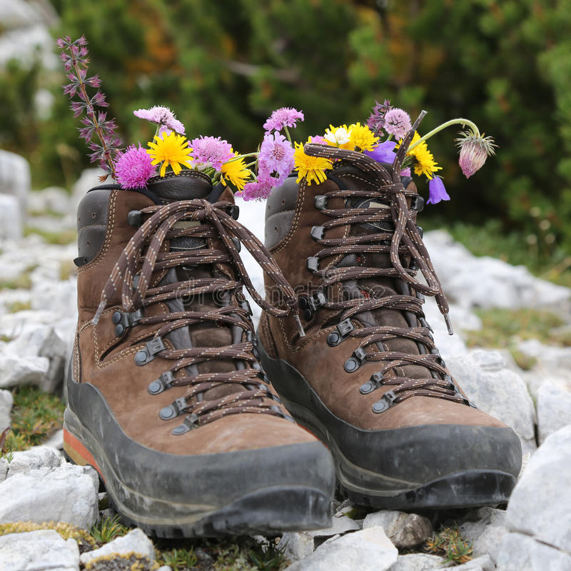 Hiking boots with flowers in the mountains royalty free stock photography