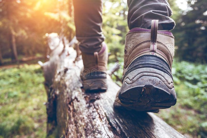 A hiking boots. Hiking boots close-up. girl tourist steps on a log stock photography