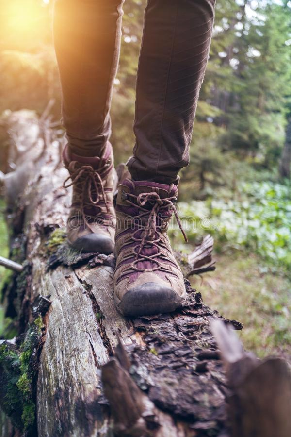 A hiking boots. Hiking boots close-up. girl tourist steps on a log stock photos