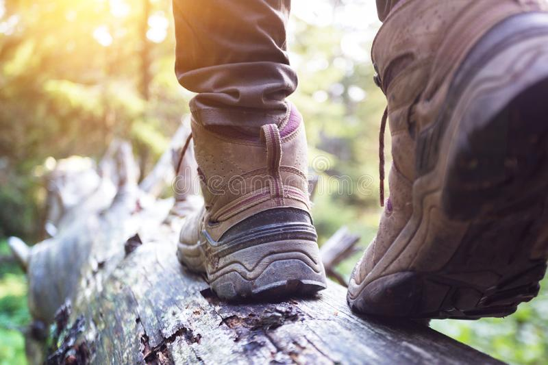 A hiking boots. Hiking boots close-up. girl tourist steps on a log stock images