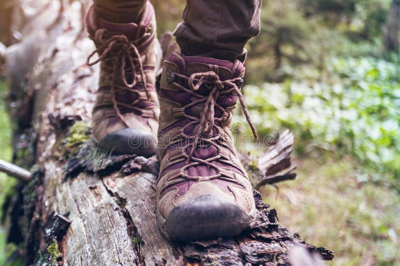A hiking boots. Hiking boots close-up. girl tourist steps on a log royalty free stock photo