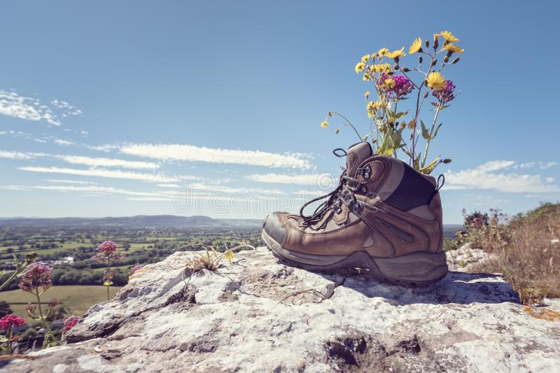 Hiking boots on a mountain trail. Hiker hiking boots resting with wildflowers on a mountain trail with distant views of countryside in summer sunshine royalty free stock photography