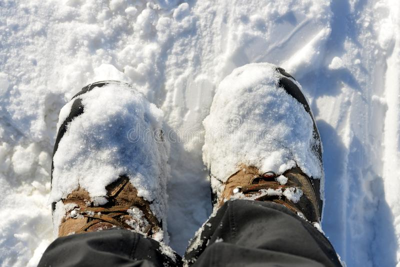 Hiking boots in the snow. Winter shoes stock image