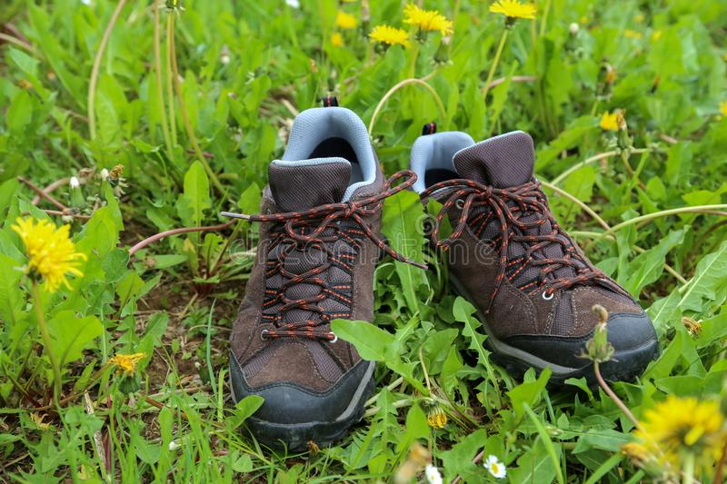 Hiking boots stand in the grass on a meadow.  stock images