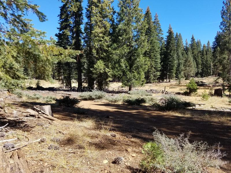 Lassen nation forest stock photography