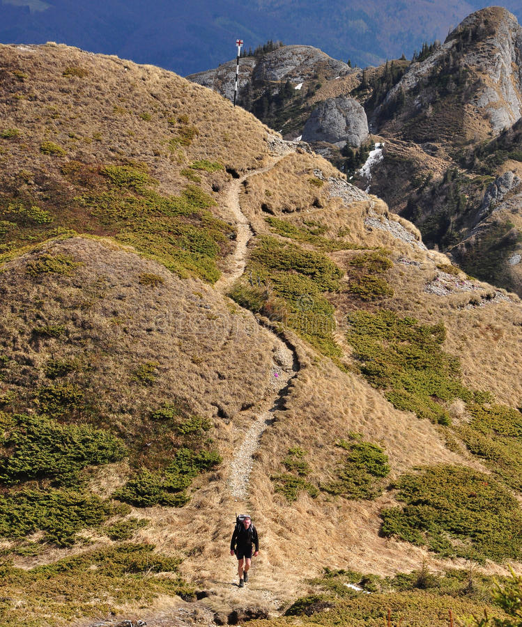 Hiking in Ciucas Mountains royalty free stock photography