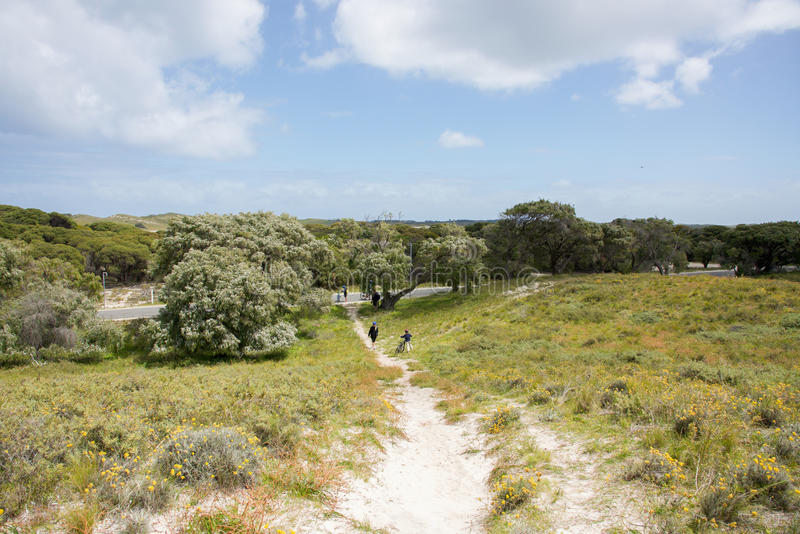 Hiking Coastal Dunes royalty free stock photo