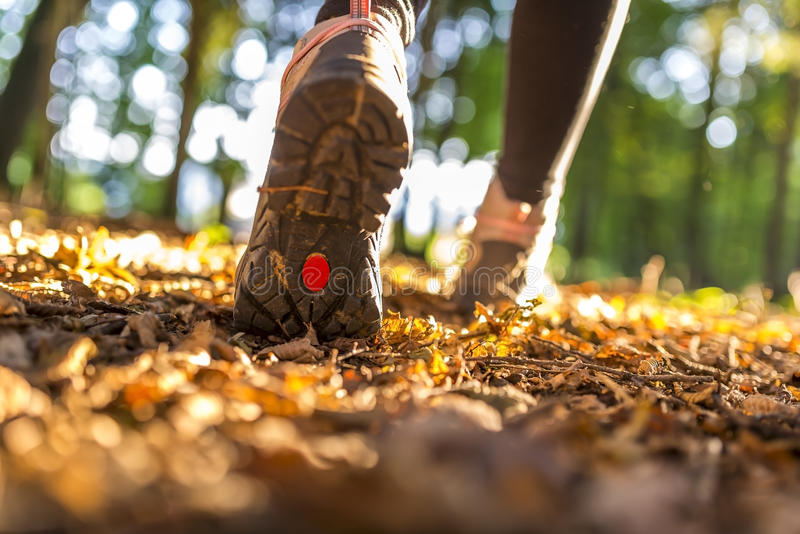 Download Hiking concept stock image. Image of exploration, outdoor - 33490871