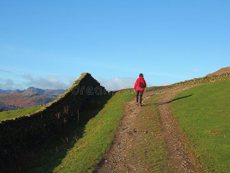 Download Hiking The Fairfield Horseshoe Stock Image - Image: 1700581