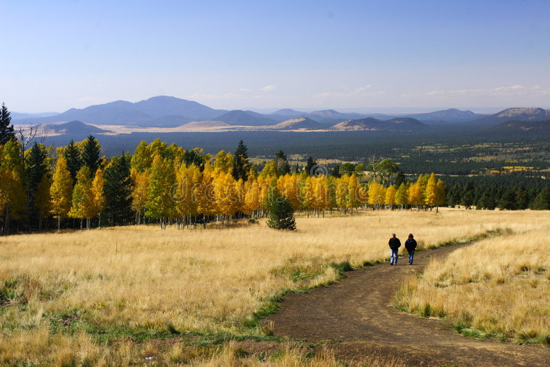 hiking in fall color flagstaff arizona royalty free stock images image 6692929. Black Bedroom Furniture Sets. Home Design Ideas
