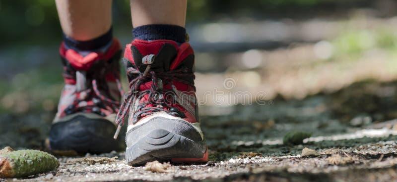 Hiking royalty free stock photos