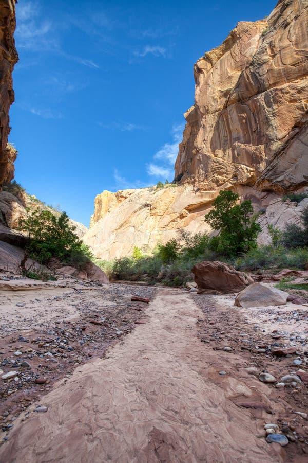 Hackberry Canyon wash Grand Staircase Escalante royalty free stock image