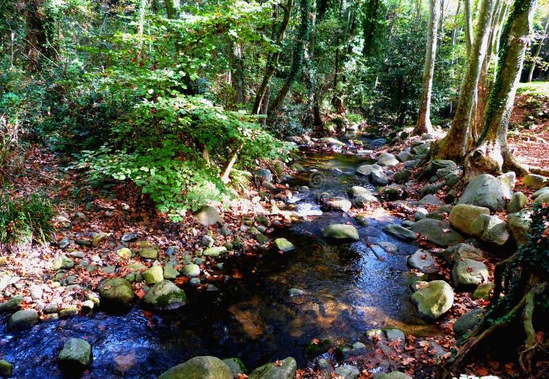 Hiking at Gualba (Montseny) royalty free stock images