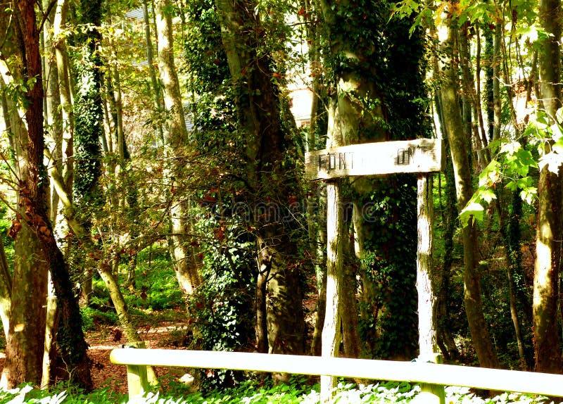 Hiking at Gualba (Montseny) royalty free stock photography