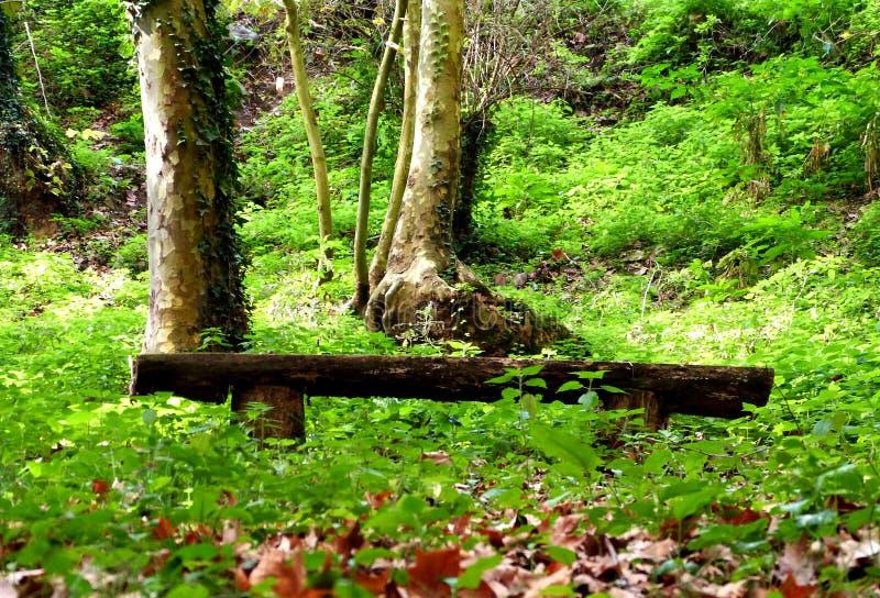 Hiking at Gualba (Montseny) royalty free stock image