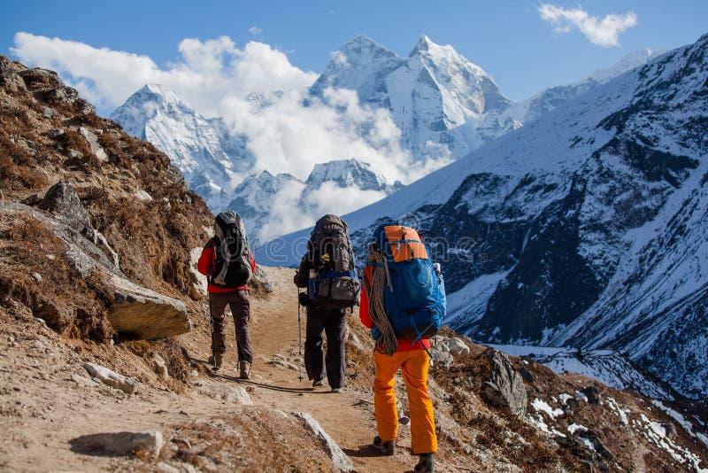 Hiking in Himalaya mountains. Hikers walk in Himalaya mountains royalty free stock photos