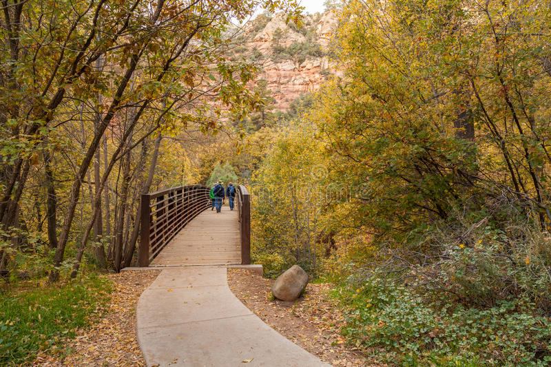 Download Hiking Int West Fork In Fall Stock Image - Image: 83702493