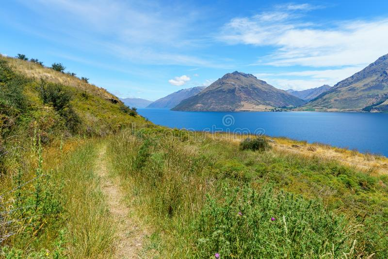 Hiking jacks point track with view of lake wakatipu, queenstown, new zealand 23. Hiking jacks point track with view of lake wakatipu, queenstown, southern alps stock photography