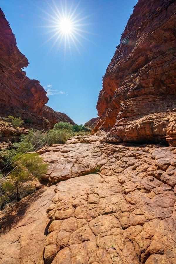 Hiking in kings canyon in the sun, watarrka national park, northern territory, australia 2. Hiking in kings canyon on a sunny day, watarrka national park stock image