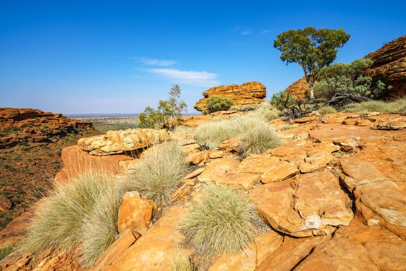 Hiking in kings canyon in the sun, watarrka national park, northern territory, australia 27. Hiking in kings canyon on a sunny day, watarrka national park stock photography